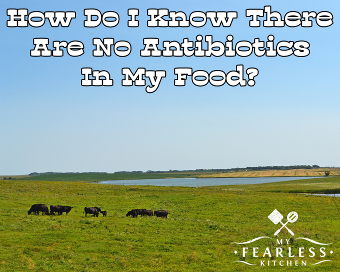 How Do I Know There Are No Antibiotics In My Food? from My Fearless Kitchen. Marketing and food labels can make it feel scary to make decisions about your family's food. How do you really know there are no antibiotics in your food? You can relax, there are a lot of systems in place to make sure that doesn't happen.