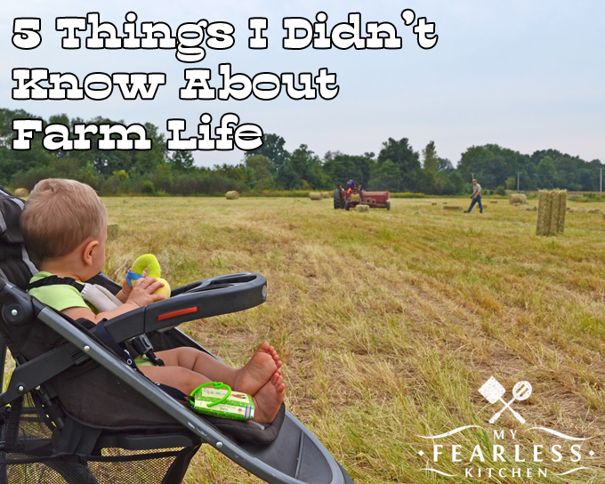 5 Things I Didn't Know About Farm Life from My Fearless Kitchen. Farm life is a lot of hard work, and it takes help from each family member. I love my farm family, and wouldn't change anything.