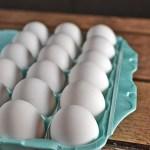 How Do I Store Eggs?