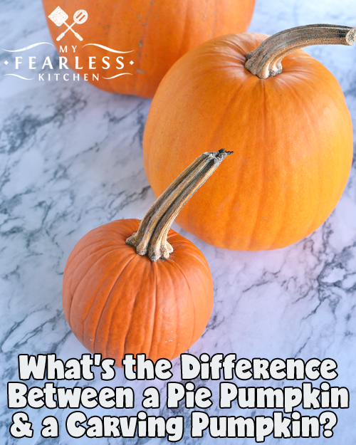 What's the Difference Between a Pie Pumpkin & a Carving Pumpkin? from My Fearless Kitchen. Just like there are lots of different varieties of apples, there are lots of different varieties of pumpkins! Some types of pumpkins are best for cooking (like in pies!) and some are best for carving and decoration. So which is which, and why? Let's find out!