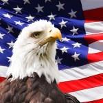http pixabay.com en eagle-america-flag-bird-symbol-219679