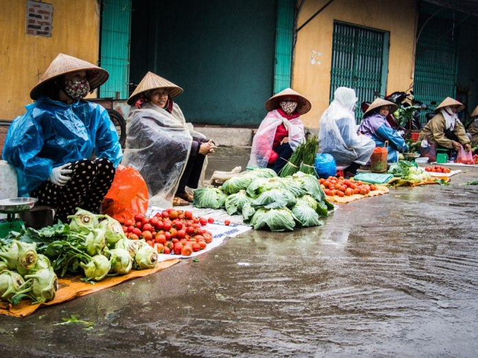 Cone hats and rain coats, Dong Trieu.