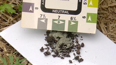 managing soil ph levels