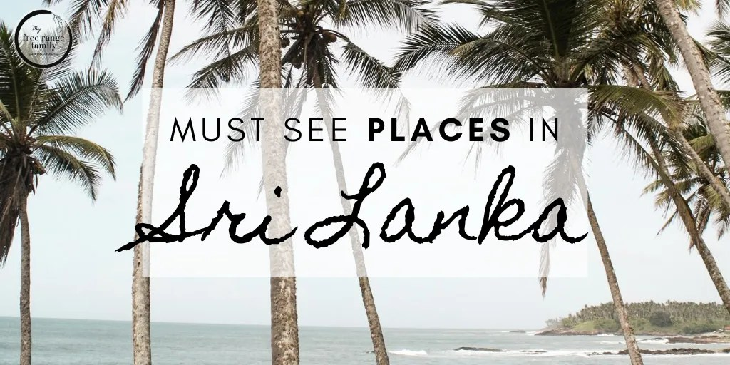 Must see places in Sri Lanka - Travel Blog