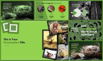 Biology-Animal-Kingdom-Google-slide-theme