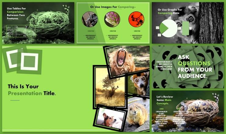 Biology Animals Slides Theme