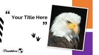 Google Slides on nimals and Birds