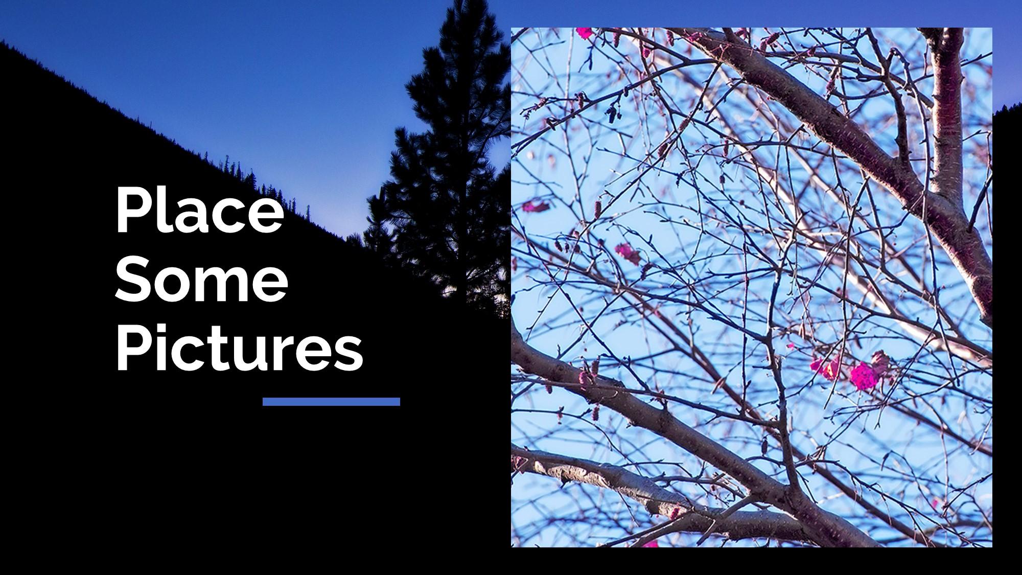 Silhouette picture slide for presengtation