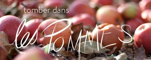 tomber dans les pommes  - Favourite french idioms - language - MyFrenchLife