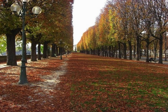 MyFrenchLife™ – MyFrenchLife.org – Paris in September – what's on - Feature Image