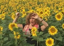 MyFrenchLife™ – guided tours of France – MyFrenchLife.org – Nicole Ress – Walk the French Talk Tours – sunflowers