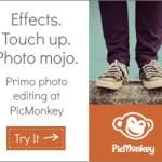 picmonkey - myfrenchtwist.com