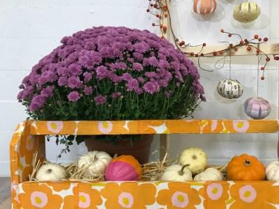 marimekko fall arrangement