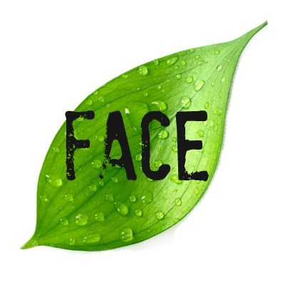 green beauty face