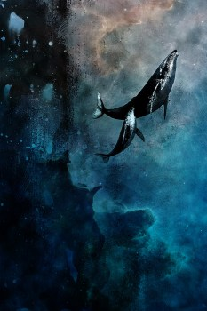 Flying Whales by VHM Alex