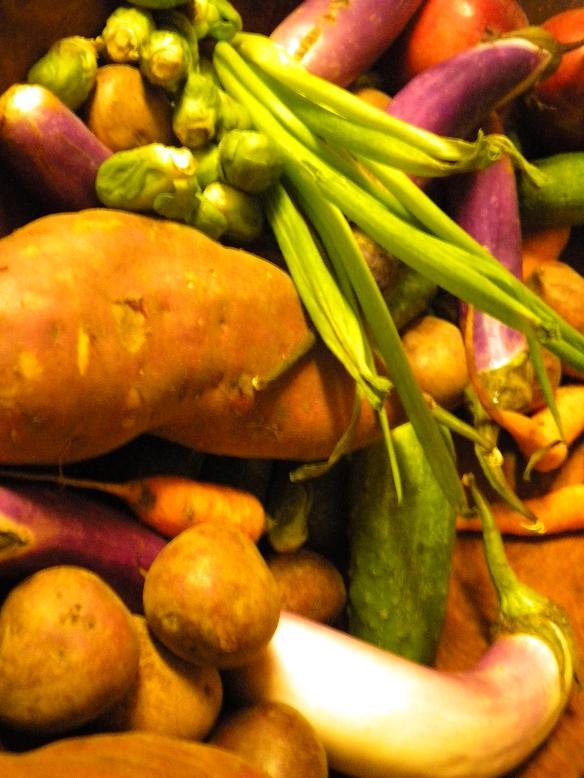 vegetables lesson plans