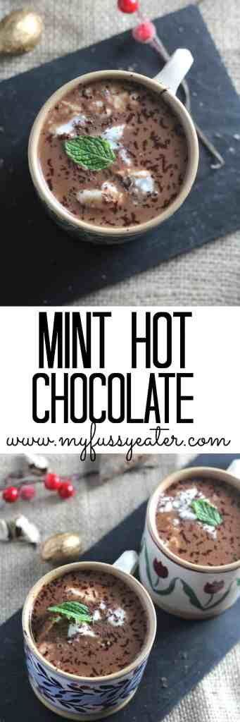Dairy-Free-Mint-Hot-Chocolate_Pinterest