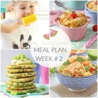 Family Meal Plan Week #2