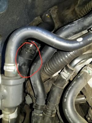 Heater hose replacement: Cost?? Coupler fix??  MyG37