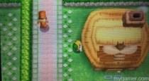 Zelda Bee