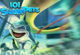 101 Shark Pets: SHARKS Review 101 Shark Pets: SHARKS Review 101SharkDS background