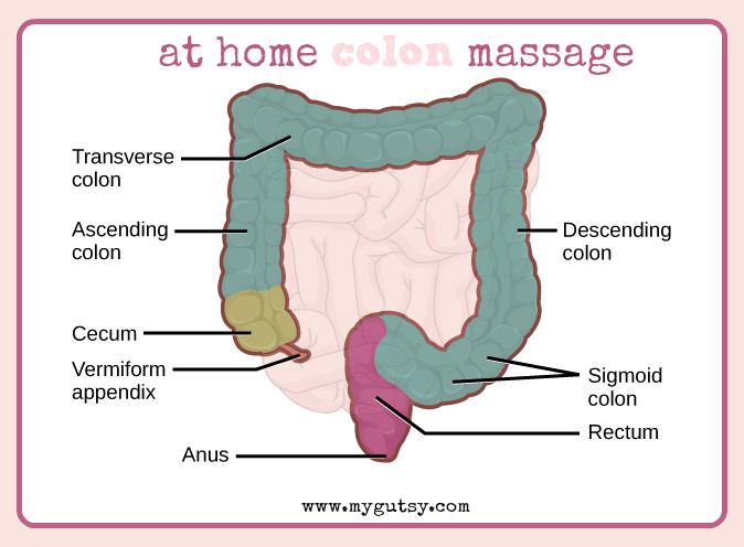 Remedies For Intestinal Dysmotility Gutsy