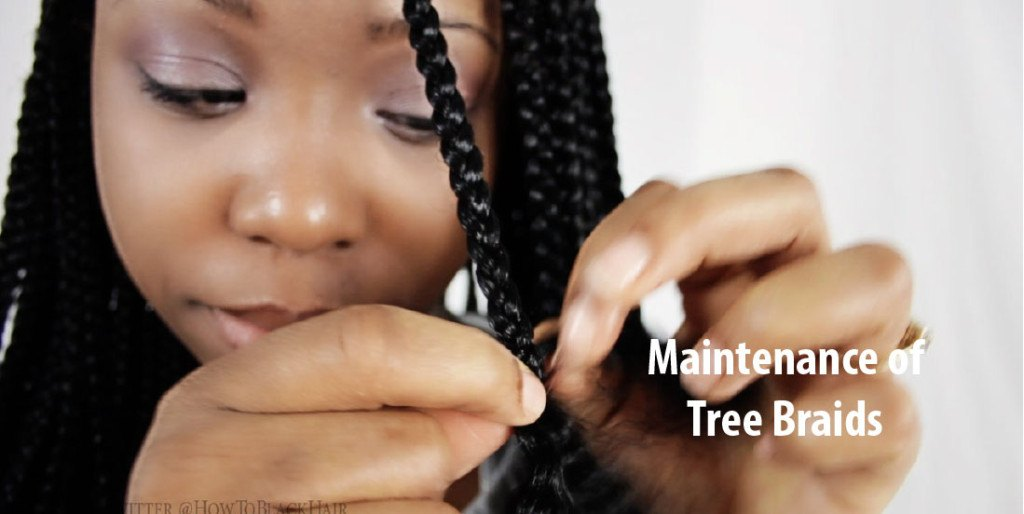 Care and Maintenance of Tree Braids