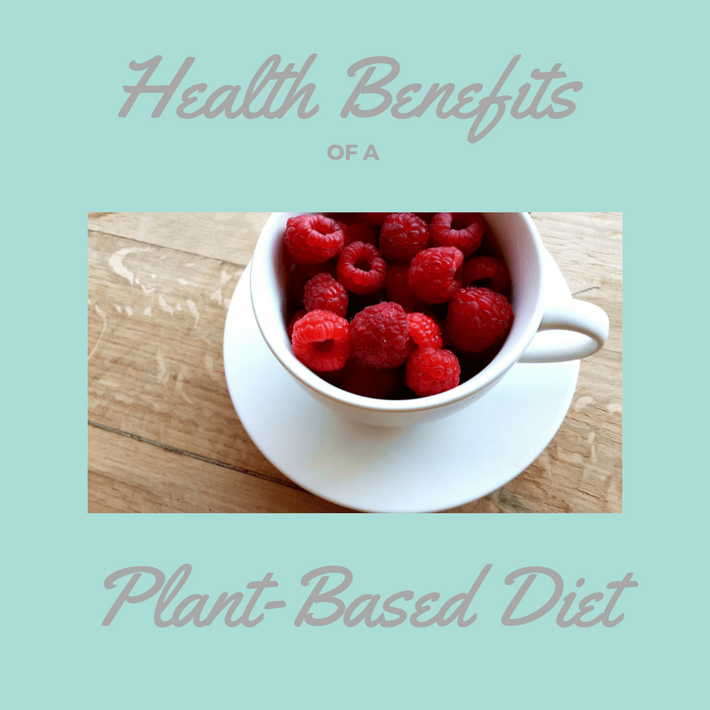 Guest Post:  Health Benefits of a Plant-Based Diet