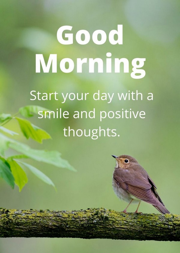 Fresh Inspirational Good Morning Quotes