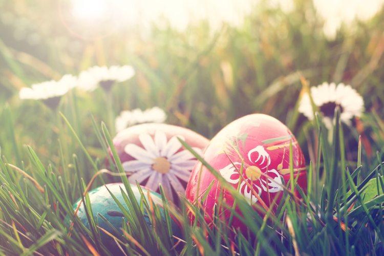 lekkerste recepten met eieren