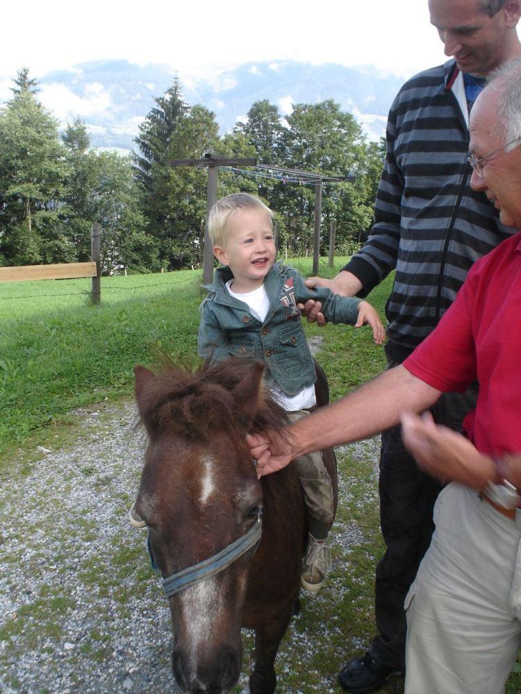 Kleine bodhi te paard