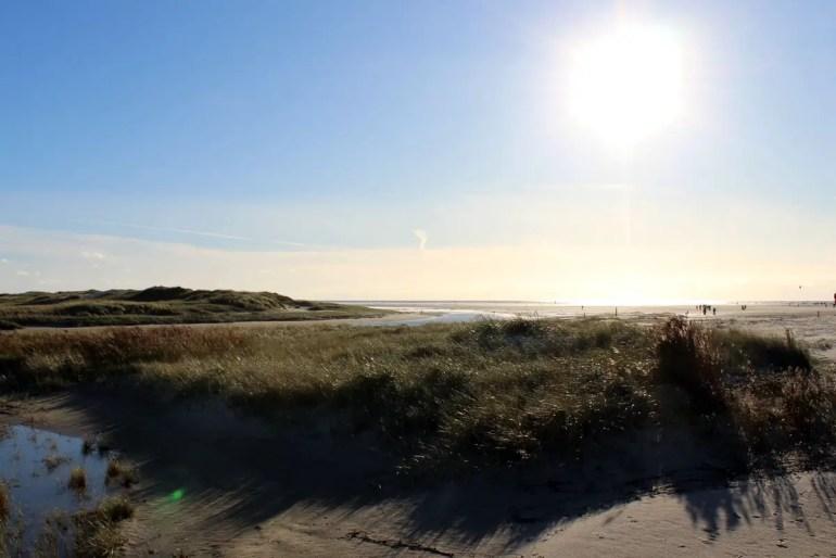 Dünen und Strand so weit das Auge reicht in St. Peter-Bad