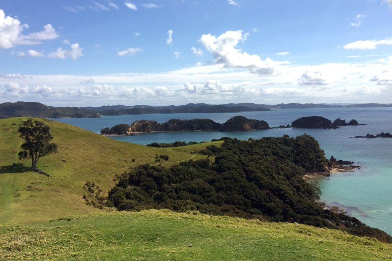 Die Bay of Islands wird von sanften grünen Hügeln durchzogen