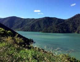Die Überfahrt von der Nord- zur Südinsel führt durch die bewaldeten Hügel der Marlborough Sounds