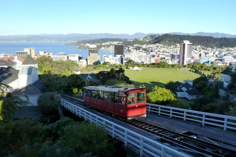 Einen tollen Ausblick über Wellington hast du vom Botanischen Garten
