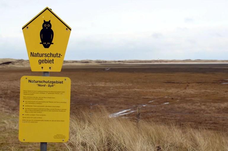 Das Gebiet rund um den Lister Ellenbogen ist eines der größten Naturschutzgebiete auf Sylt