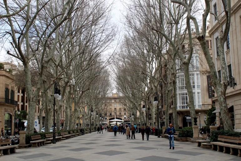 Palmas bekanntester Boulevard ist der von Platanen gesäumte Passeig del Born