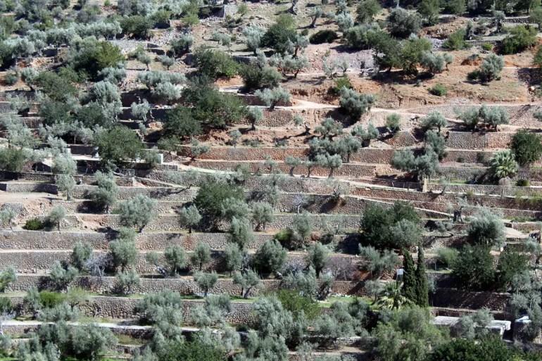 Rund um Banjabulfar gibt es die typischen Terrassenfelder
