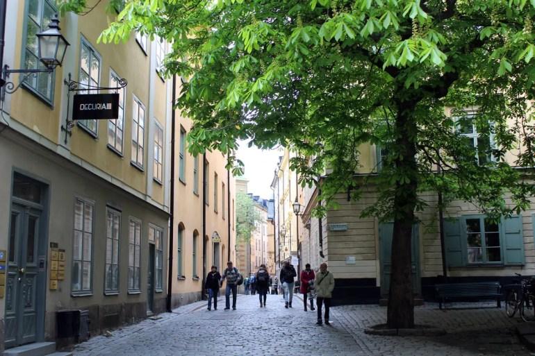 Ein schattiges Plätzchen mitten in Stockholms Altstadt Gamla Stan