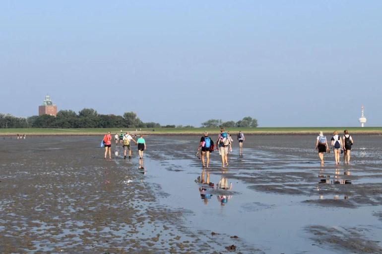 Ein Klassiker in Cuxkaven: die Wattwanderung zur Insel Neuwerk