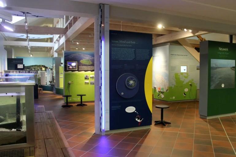 Im Nationalpark-Haus erwartet dich eine Ausstellung über das Wattenmeer