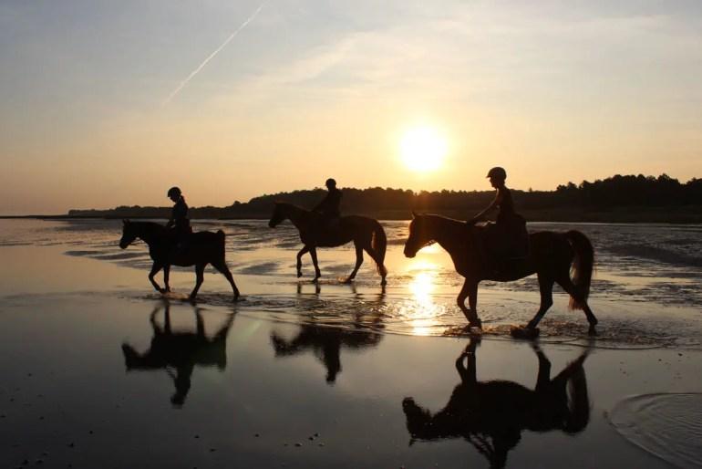 Morgenstimmung am Strand: drei Reiterinnen auf dem Weg zur Insel Neuwerk