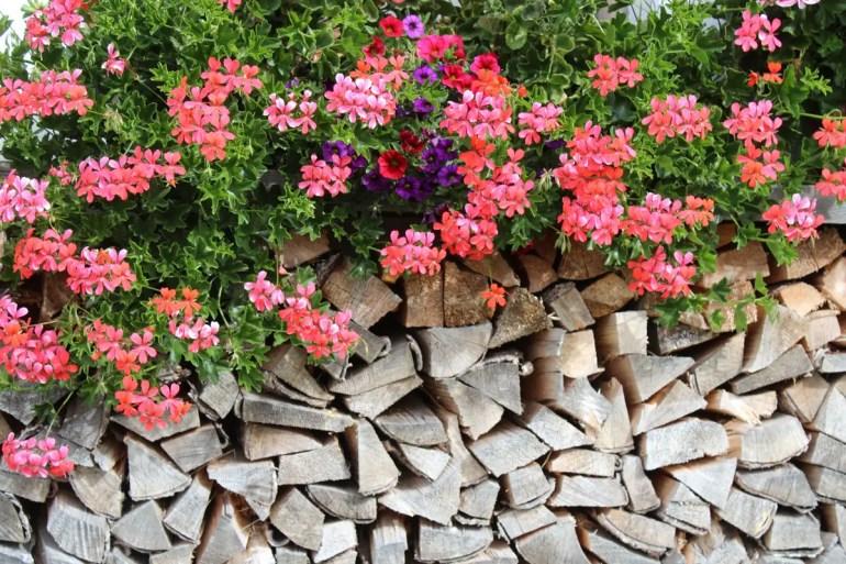 Bergidylle mit Holz und Blumen