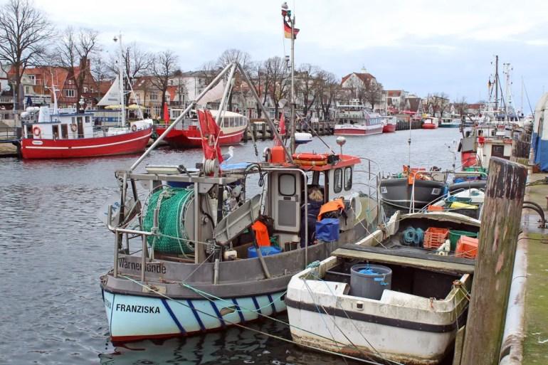 Am Alten Strom in Warnemünde liegen noch viele Fischerboote