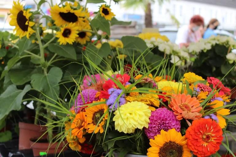 Leuchtende Blumen auf dem Rosenheimer Markt