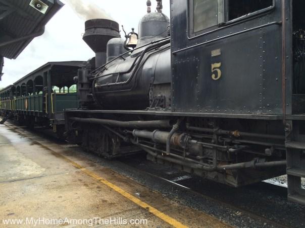 Shay locomotive at Cass