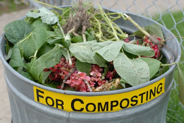 house-hold-compost1