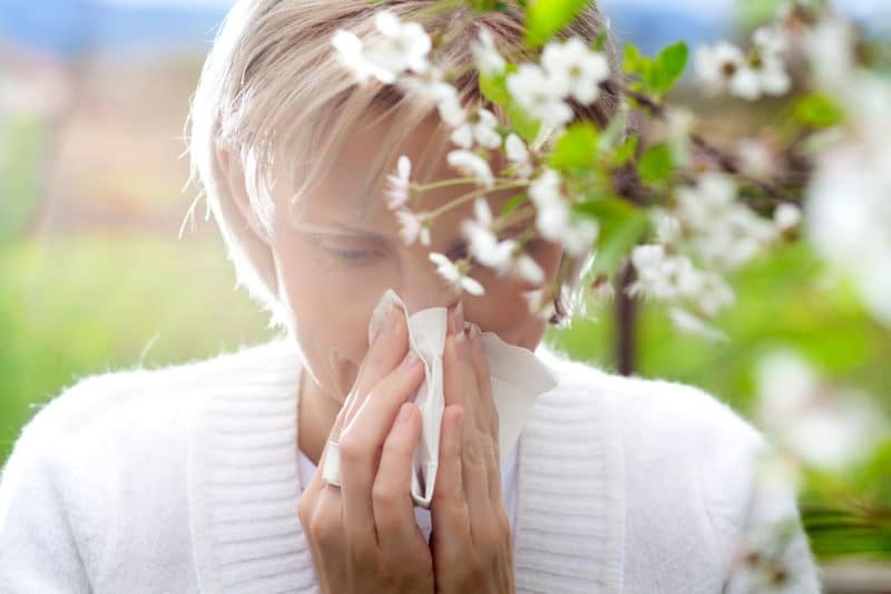 allergies chiropractic