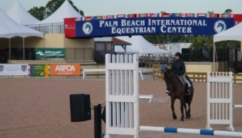 Fix your canter problems! - Horses & Champagne
