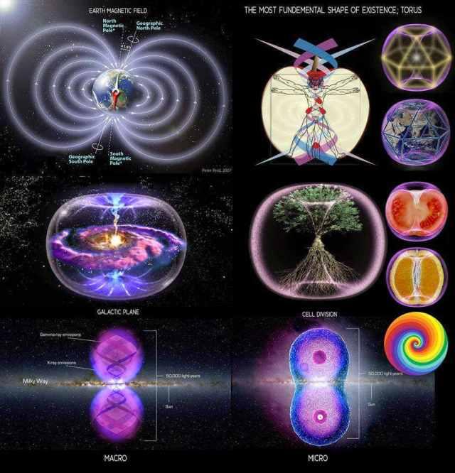 Image result for universe form torus